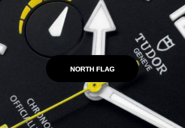 Tudor North Flag